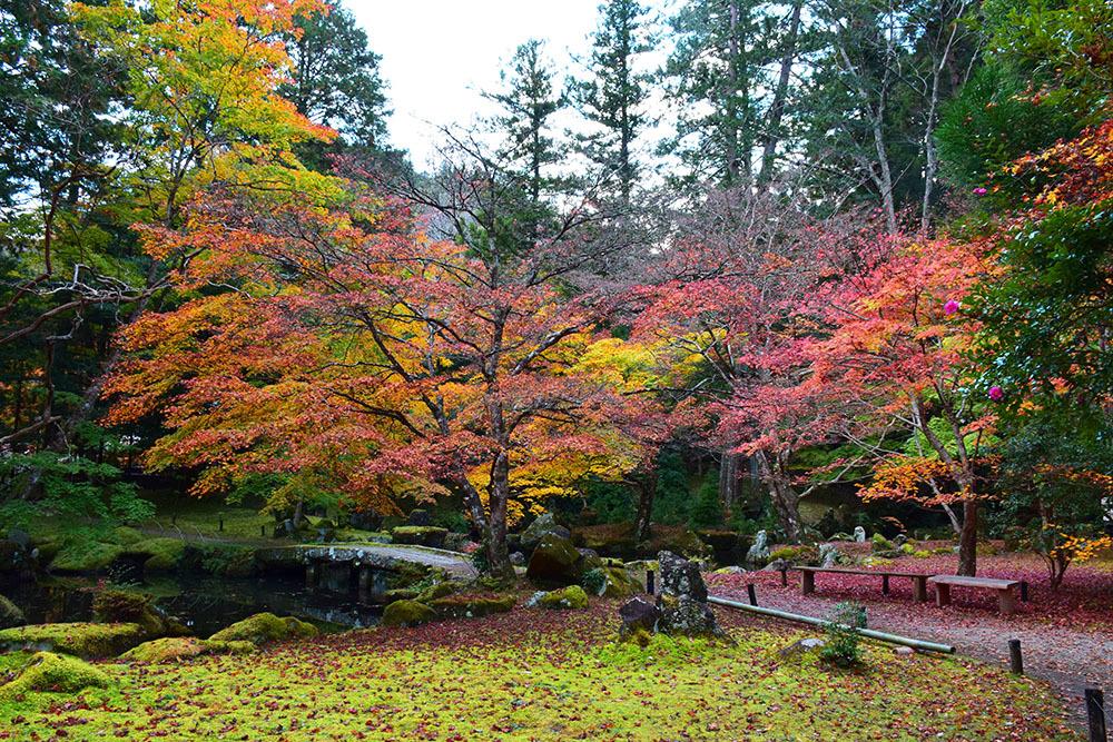 室町時代の庭園が残る多気北畠氏城館跡を訪ねて。<後編> 武家庭園_e0158128_14142042.jpg