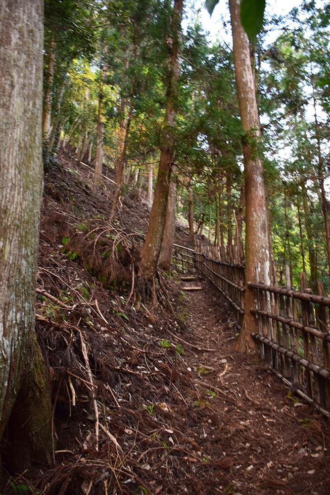 室町時代の庭園が残る多気北畠氏城館跡を訪ねて。<後編> 武家庭園_e0158128_14182744.jpg