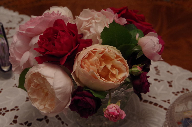 マンションに咲く薔薇_a0074540_11151800.jpg