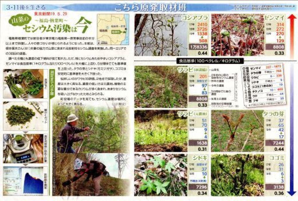 樽葉町 山菜のセシウム汚染は今 / こちら原発取材班 東京新聞 _b0242956_01005138.jpg