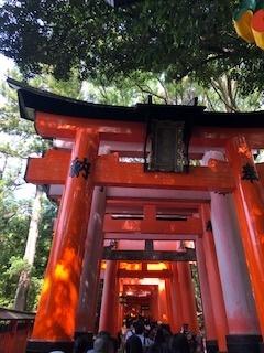 京都のつづき_e0202773_17074310.jpg