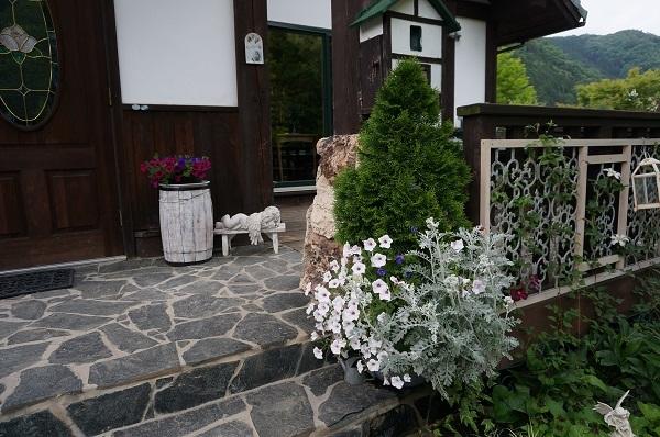 夕方のノラの庭_e0365880_21462018.jpg