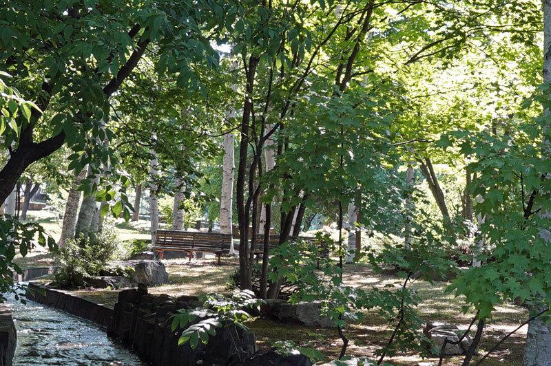 朝の散歩_d0162994_05410545.jpg