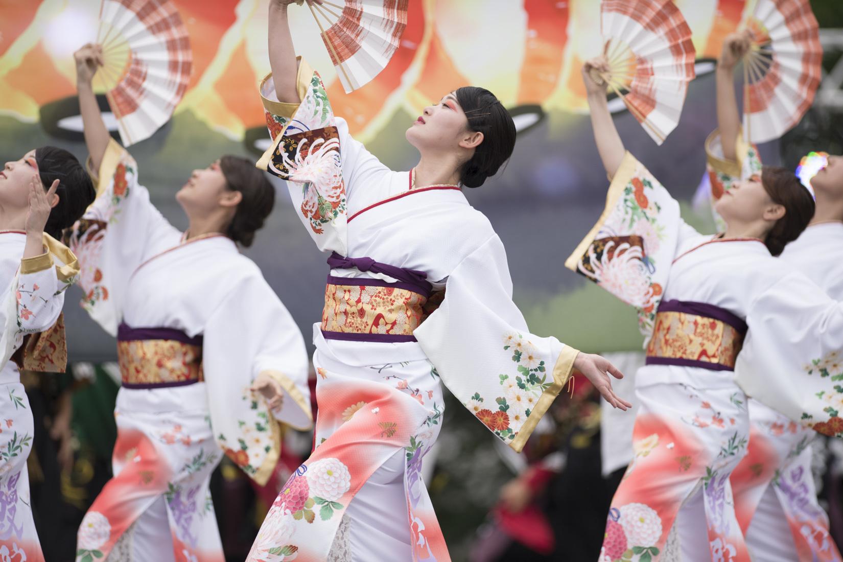 2019 犬山踊芸祭『浜松学生連 鰻陀羅』_f0184198_00134302.jpg