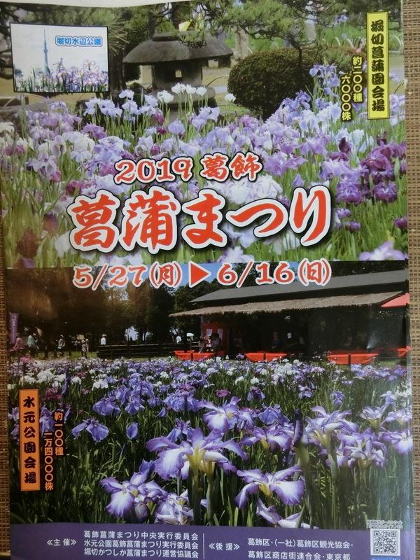 6月5日(水) 葛飾菖蒲まつり始まってます_d0278912_14031248.jpg