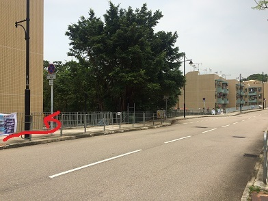 廃村を歩き、香港住宅問題を目の当たりにする☆Ma Wan\'s Abandoned Old Fishing Village_f0371533_13155294.jpg