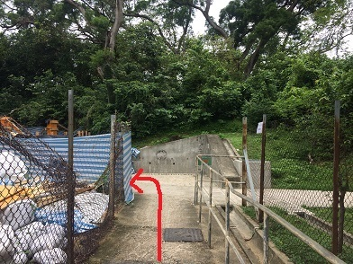 廃村を歩き、香港住宅問題を目の当たりにする☆Ma Wan\'s Abandoned Old Fishing Village_f0371533_13160591.jpg