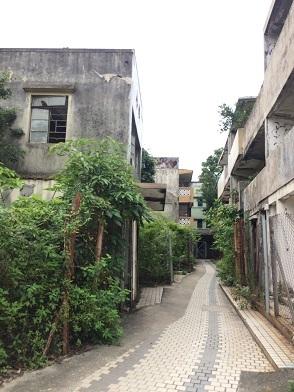 廃村を歩き、香港住宅問題を目の当たりにする☆Ma Wan\'s Abandoned Old Fishing Village_f0371533_13161479.jpg