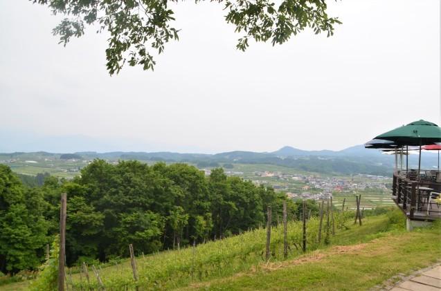 フランスの田舎風_c0202242_13514329.jpg