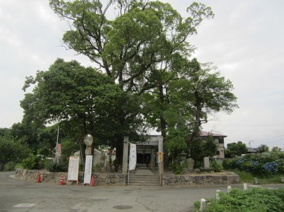太宰府・坂本八幡宮には旅人の人生最後の秋に詠んだ歌碑がある_a0237545_09503982.jpg
