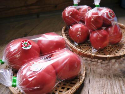 樹上完熟の朝採りトマト 令和元年の予約販売受付スタート!初回出荷は6月11日(火)です!_a0254656_18083255.jpg