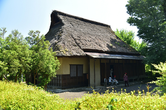 北国街道 鯖江宿から金津宿を行く_e0164563_12023459.jpg