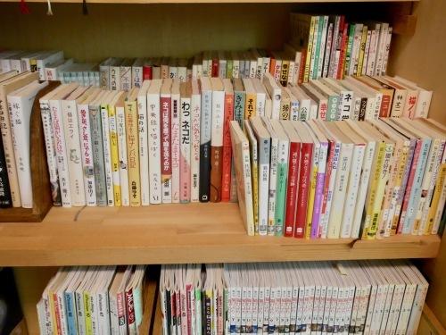 ねこのわ文庫・軽井沢支所オープン_f0054677_07571697.jpeg
