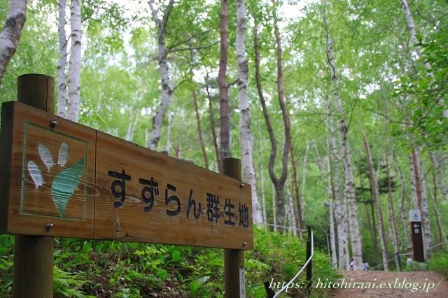 芦川すずらん群生地_f0374092_23090831.jpg