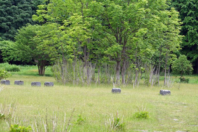 前田森林公園_d0162994_05284538.jpg