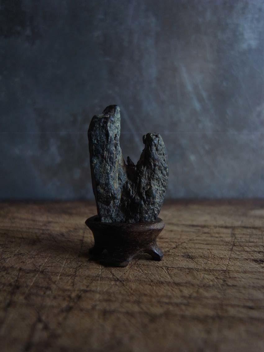 盆石、亀_a0315601_18044468.jpg