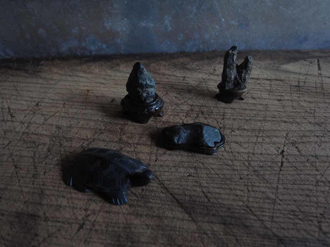 盆石、亀_a0315601_18045230.jpg