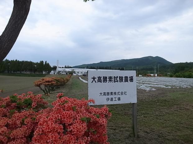 大高酵素 北海道工場見学_f0197703_15415489.jpg