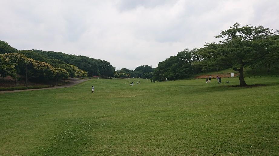6/2  根岸森林公園 @横浜_b0042308_08013731.jpg