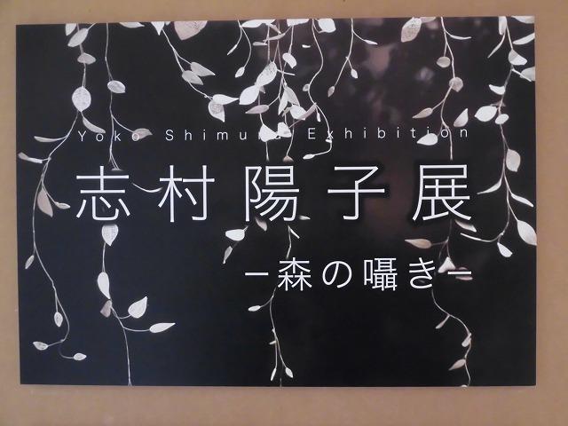 鈴木つなパフォーマンス「赤い羽根」inふじ・紙のアートミュージアム_f0141310_08180446.jpg