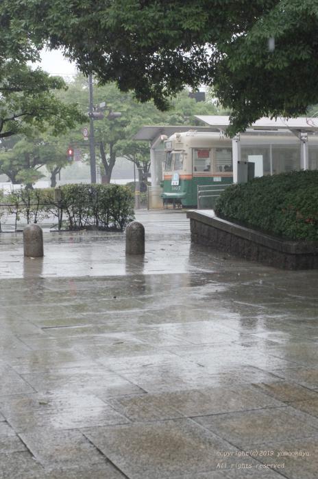 また雨が_d0309612_00355045.jpg