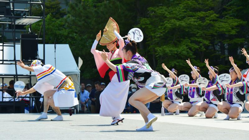 四国の祭り 2019 娯茶平  ①_d0246136_16551156.jpg