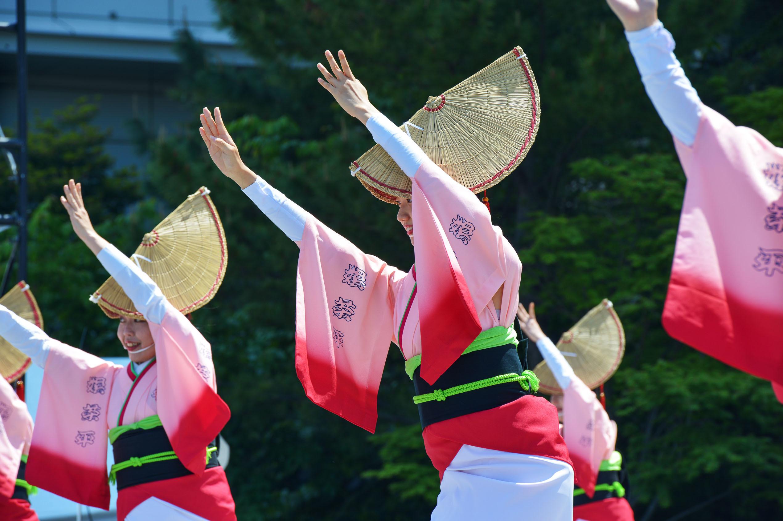 四国の祭り 2019 娯茶平  ①_d0246136_16552756.jpg
