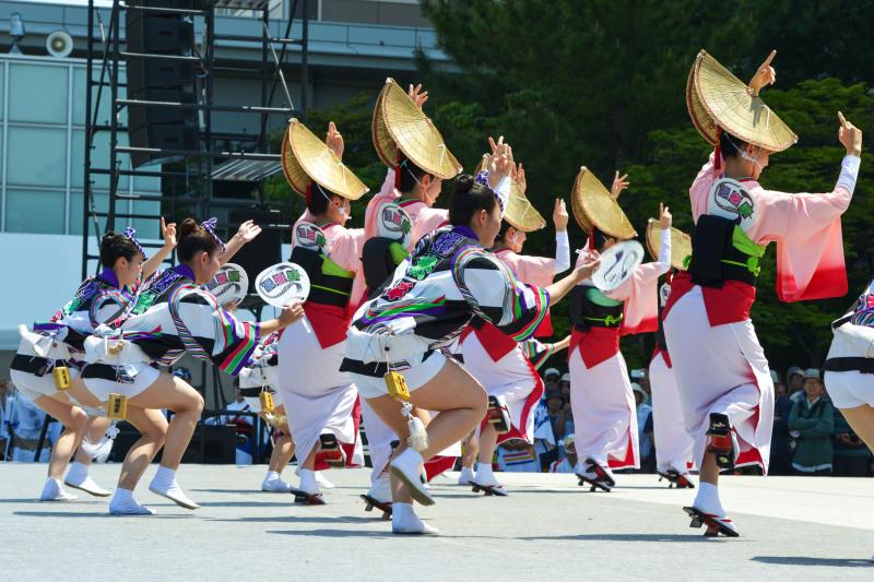 四国の祭り 2019 娯茶平  ①_d0246136_16561502.jpg