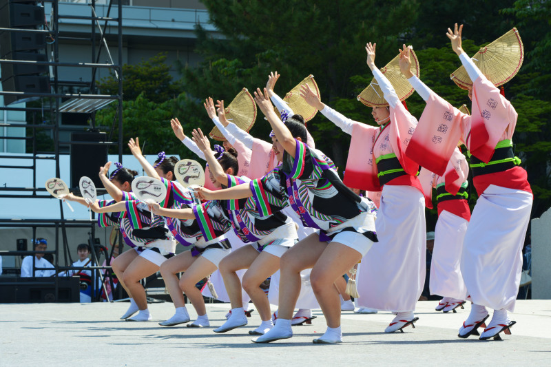 四国の祭り 2019 娯茶平  ①_d0246136_16561998.jpg