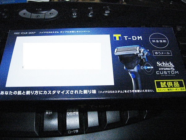 T-DMの試供品・シックハイドロ5カスタム_f0182936_23490771.jpg