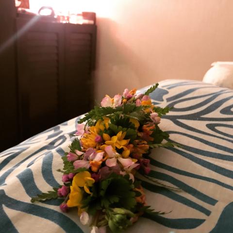 ホテル レクストン種子島 でロミロミキャンペーン!_b0181141_22283641.jpg