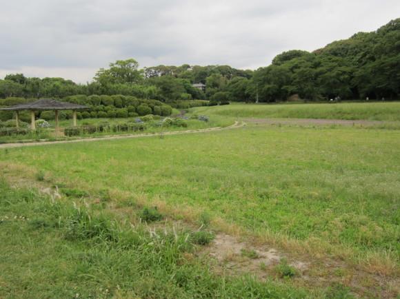 太宰府・坂本八幡宮には旅人の人生最後の秋に詠んだ歌碑がある_a0237545_16500896.jpg