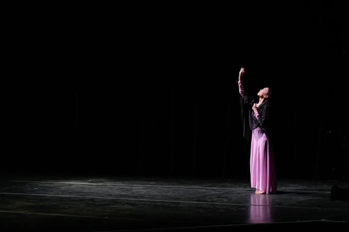 NuVu Festival - RESONANCE III - Limón Dance Company at the Joyce_b0069951_05130640.jpg