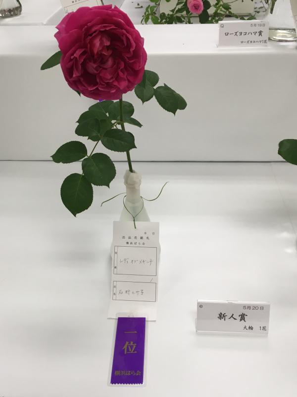 横浜高島屋さん バラ展_c0195496_07514931.jpg