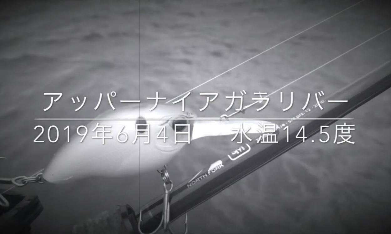 NLW VLOG #41 【スペシャルゲストとコラボフィッシング!】_d0145899_12503440.jpeg