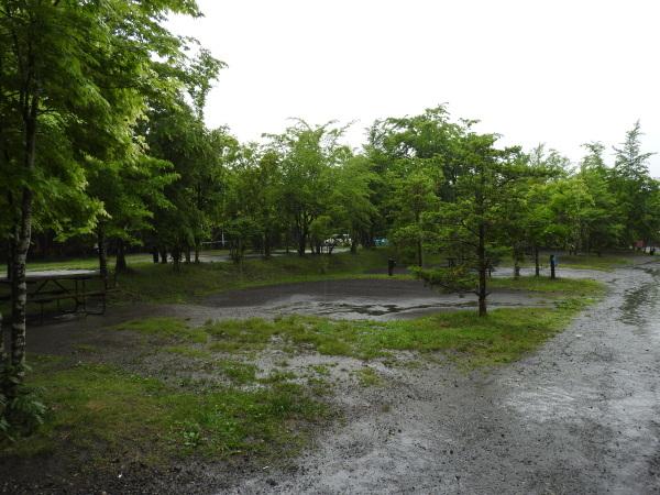 今週末の天気と気温(2019年6月7日):雨模様…肌寒さに注意_b0174425_10071678.jpg