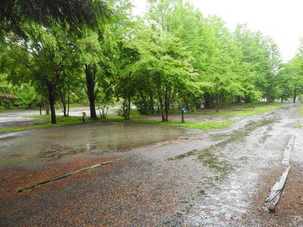 今週末の天気と気温(2019年6月7日):雨模様…肌寒さに注意_b0174425_10074070.jpg