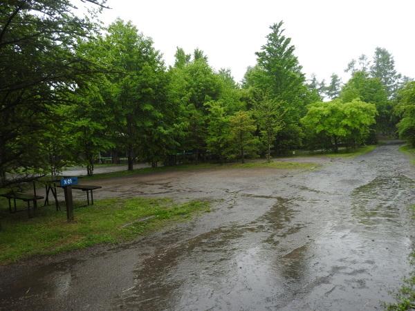 今週末の天気と気温(2019年6月7日):雨模様…肌寒さに注意_b0174425_10074634.jpg