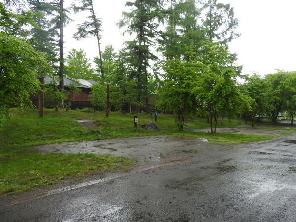 今週末の天気と気温(2019年6月7日):雨模様…肌寒さに注意_b0174425_10080785.jpg