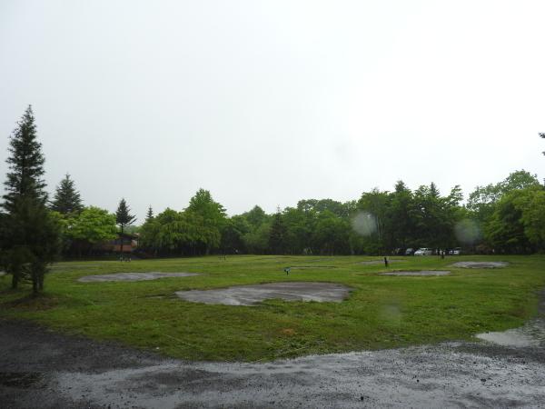 今週末の天気と気温(2019年6月7日):雨模様…肌寒さに注意_b0174425_10135917.jpg
