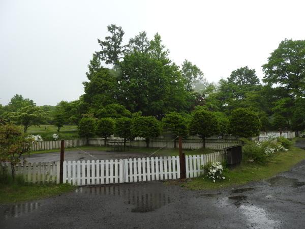 今週末の天気と気温(2019年6月7日):雨模様…肌寒さに注意_b0174425_10145887.jpg