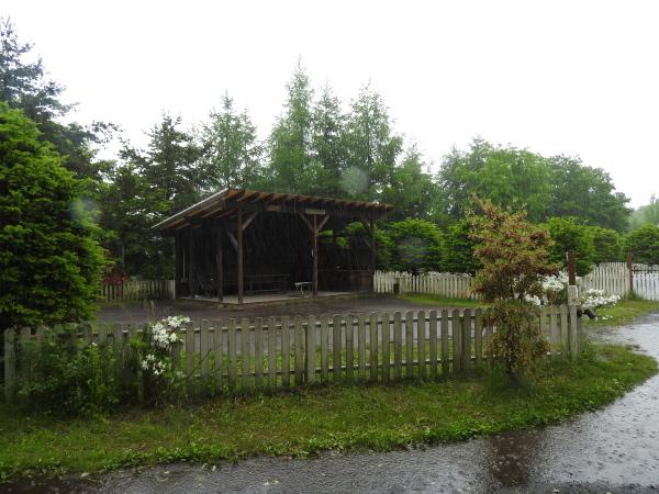 今週末の天気と気温(2019年6月7日):雨模様…肌寒さに注意_b0174425_10150708.jpg