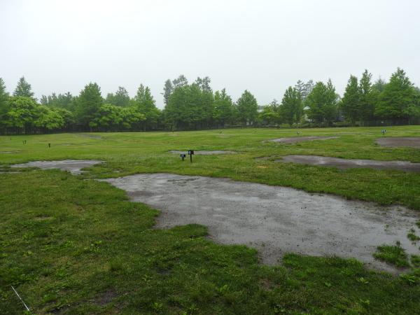 今週末の天気と気温(2019年6月7日):雨模様…肌寒さに注意_b0174425_10153339.jpg