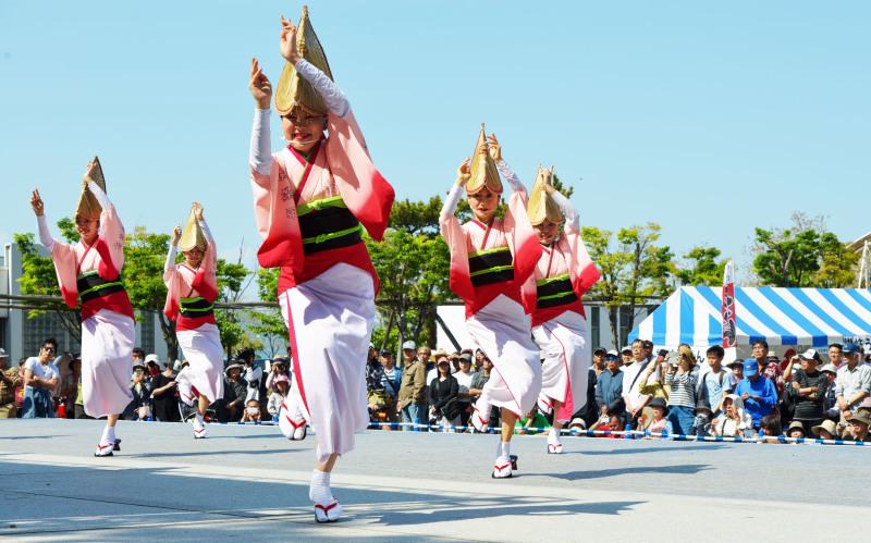 四国の祭り 2019  娯茶平 ②_d0246136_16132055.jpg