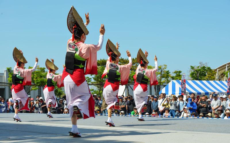 四国の祭り 2019  娯茶平 ②_d0246136_16132490.jpg