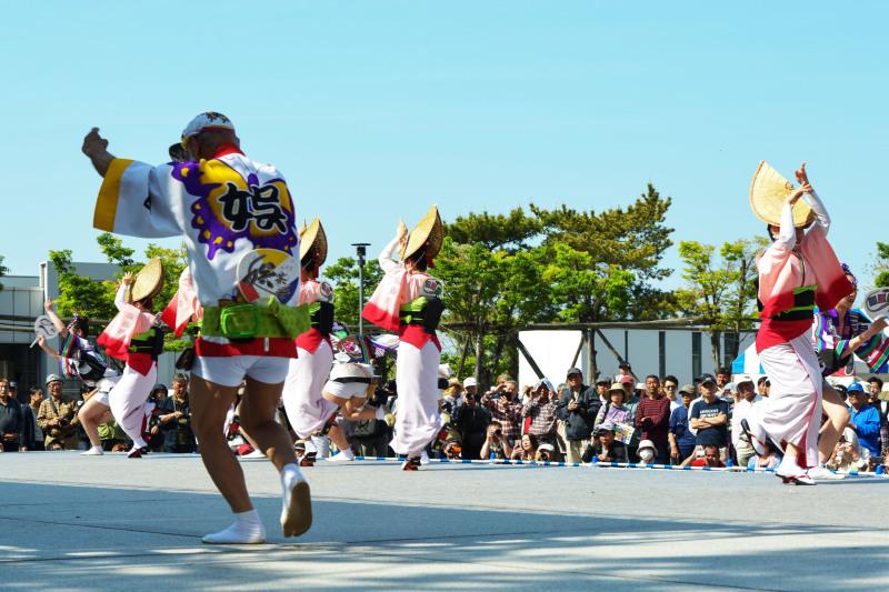 四国の祭り 2019  娯茶平 ③_d0246136_17061696.jpg