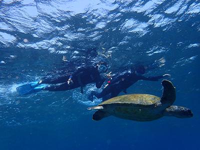 底土を泳ぎまくりました~(^^)v_b0189640_13213659.jpg