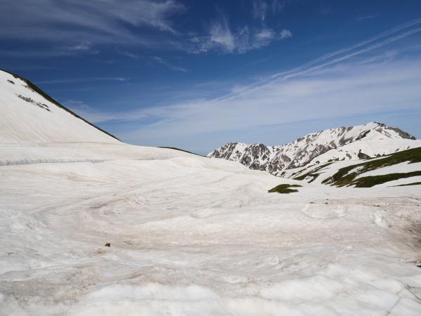 立山 雪の大谷_a0351368_12082579.jpg