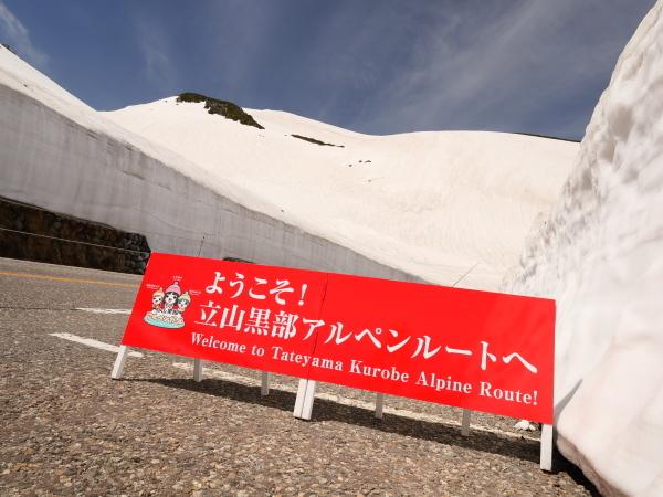 立山 雪の大谷_a0351368_12092342.jpg