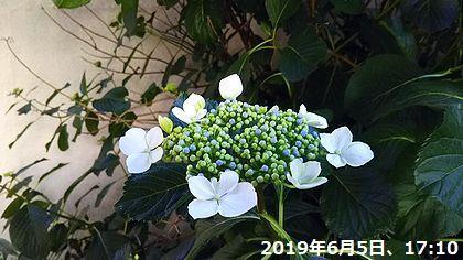 d0051601_02404123.jpg